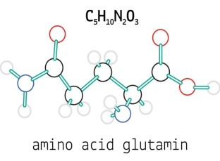 amino-acid-glutamin